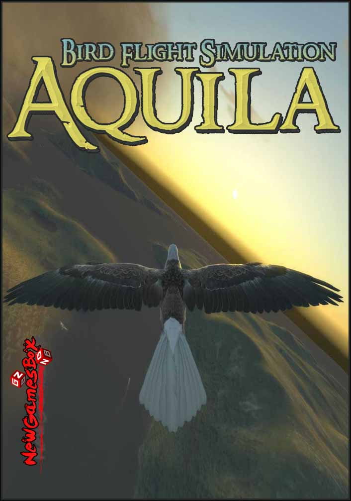 Aquila Bird Flight Simulator Free Download Full PC Setup