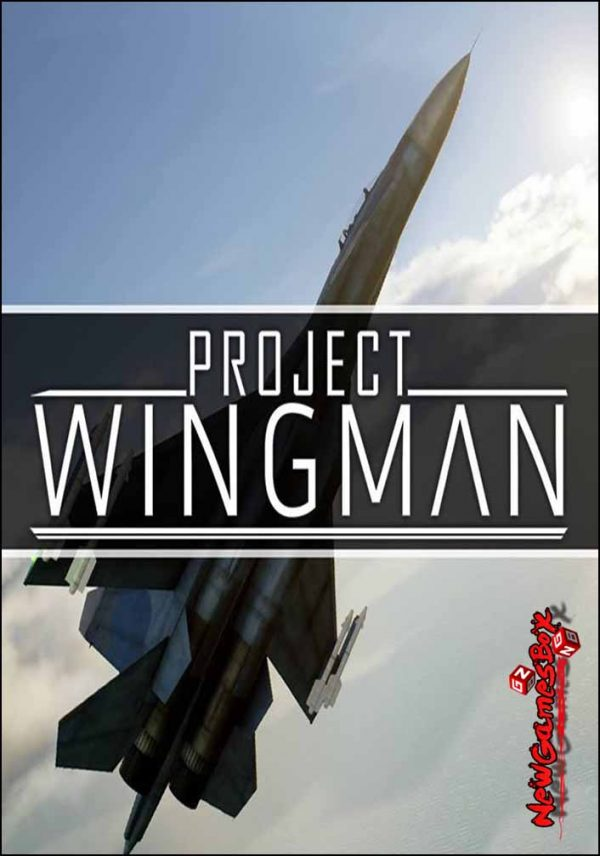 Project Wingman Free Download