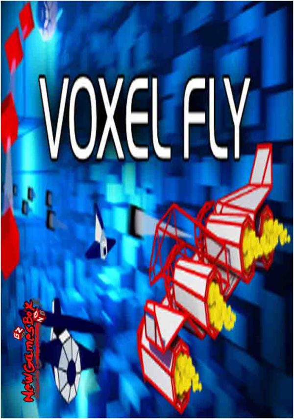 Voxel Fly Free Download